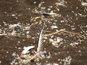 5-gyres-ocean-plastic-pollution